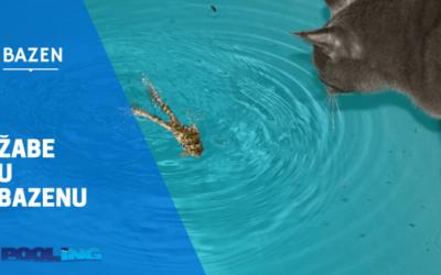 Kako da oterate žabe od bazena